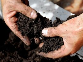 Soil and fertilisers